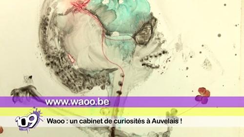 Le Cabinet de Curiosités WAOO sur CanalC